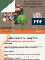 Avances, posibilidades y retos en investigación en productos no maderables del bosque en Amazonas