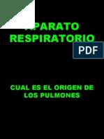 respiratorio embrio