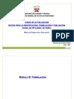 Pautas Para La FormulaciyEvaluacidePIP de Transportex[1]