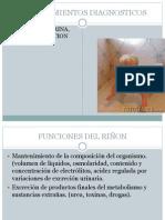 Procedimientos Diagnosticos Metodos de Laboratorio Renal.