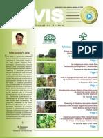 2009 Vol 14 Envis Newsletter an Indigenous Broom Made From Parthenium Hysterophorus L. Asteraceae