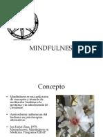 Salud Mental Mind Ul Ness