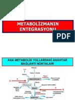 Met.entegrasyonu 2 14