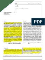 paginas 10-17