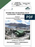Informe Final de Revc de Sso (2) (2)Final