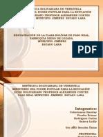 Presentacion Proyecto Paso Real