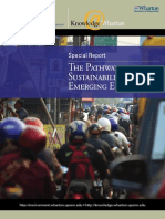 The Pathways to Sustainability in Emerging Economies