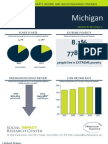 2011 Michigan Fact Sheet