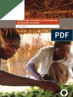 Investir dans les arbres et la restauration de paysages en Afrique
