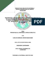 Descripcin y Uso de Especies Con Propiedades Medicinales en Las Comunidades de San Francisco Chanc Salit