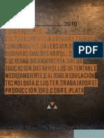 Consejo Informe2010