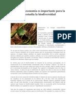 taxonomía articulo