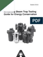 Steam Trap Inspection