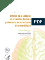 2. Efectos de Las Drogas en El Cerebro Humano y Relevancia en Los Estados de Comorbilidad