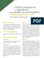 8. Patología Dual en esquizofrenia, TDAH y cannabis.