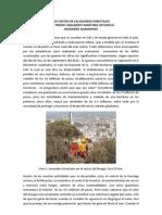 Los Costos de Las Quemas Forestales-20!09!2012