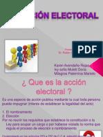 Accion Electoral Exp.