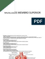 MÚSCULOS MEMBRO SUPERIOR
