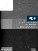 samuelabadmedidacautelaryprocesodeamparo-120808150016-phpapp02
