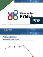 Alianza Por Las PYMES 2010