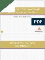 Importância e sintomatologia