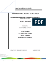 4ta Calificacion fitosanitaria en la seleccion de variedades de caña :)