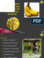 4. Government Schemes - Policies in Marketing Banana_0