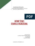 Informe Organizacion y Desarrollo