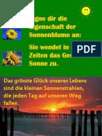 e i Gen Schaft Der Son Nen Blume