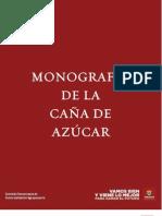 MONOGRAFIA CAADEAZUCAR2010
