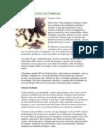 CONTROLE ECOLÓGICO DE FORMIGAS