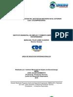 Plan de Visibilizacion Del Sector de Bisuteria en El Exterior