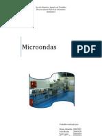 PGA Microondas T2 Word