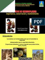Bancos de Germoplasma-importancia