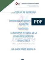 portafolio de evidencias modulo 1 profordems sexta generación