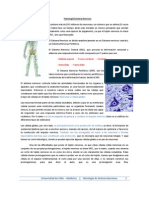 10. Histologia Sistema Nervioso 2012