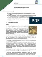 Informe de Lixiviacion y Cementacion de Cobre 2012- A - Copia