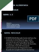 Expo Mercosur