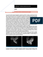 07e0e6102 Historia de la Urología (Dr. Julio César Potenziani Bigelli)