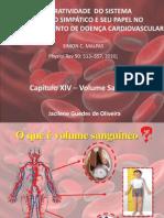 Apresentação volume sanguineo