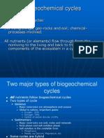 Biogeochemical Cycle