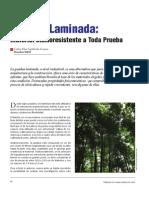 arquitectura_guadua