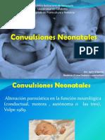 Convulsiones Neonatales Reunion de Servicio