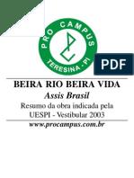 Beira Rio Beira Vida