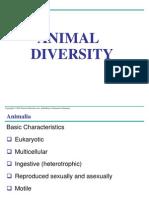 Animal Diversity.bio104