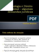 17. Psicologia e Direito Criminal