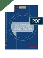ESTUDIO DE CARGA DE ENFERMEDAD EN LA PROVINCIA DE LIMA Y REGIÓN DEL CALLAO