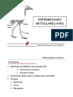 ENFERMEDADES ARTICULARES