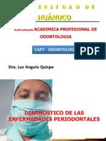 Dra Luz Capt