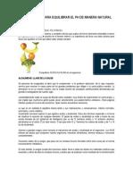Dieta Alcalina Para Equilibrar El pH de Manera Natural